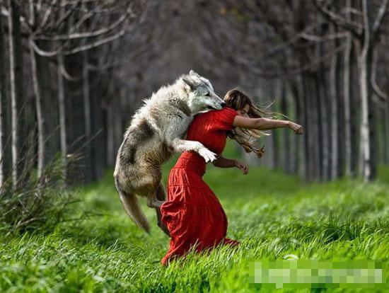 关于女人与动物做爱的事,并非稀奇.中国古代的文字中早有记载,如