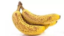 一根长斑香蕉到底有多厉害…