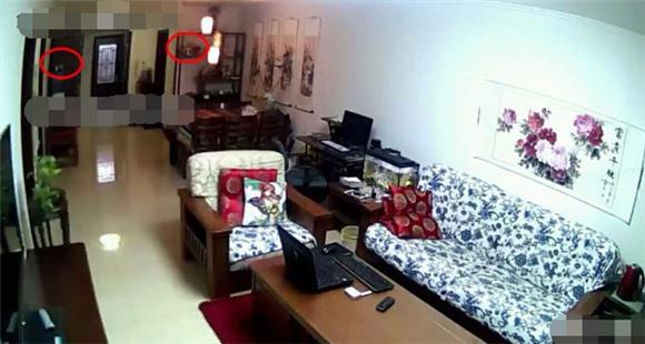 女子在家装监控查看女儿学习 却发现丈夫的秘密
