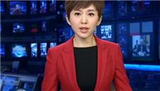 最能代表中国美的当属央视主播