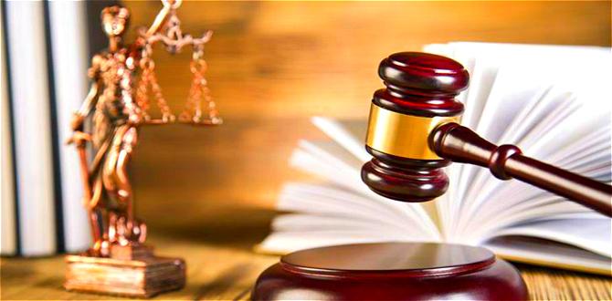 司法部:5月1日起律師等受處罰信息可在網上查詢