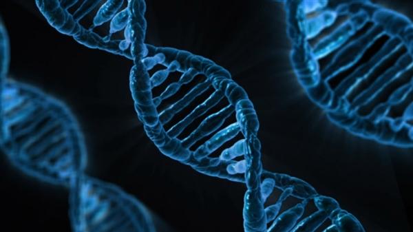 日本男女最新相亲方式:靠DNA