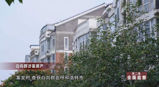 一个小区 100 套房,安置 100 多个情人!——华融赖小民被抓细节曝光